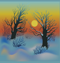 winter sunset landscape vector image