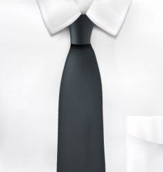 shirt and tie illustration vector image vector image