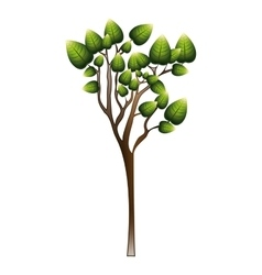 silhouette tree with leafy branches vector image vector image