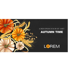autumn time banner with pumpkin and wheat ears vector image
