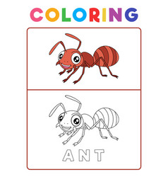 funny ant insect animal coloring book with vector image