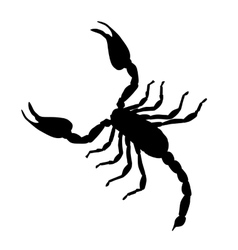 Large Scorpion Silhouette vector