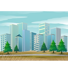 Pine trees along the street vector image