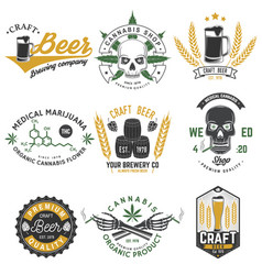 set medical cannabis and craft beer badge vector image