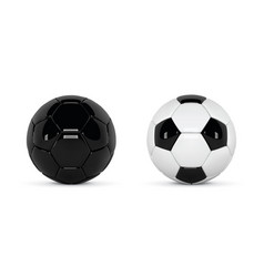 set of 2 realistic soccer balls or football ball vector image