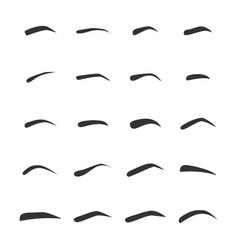 set of the left femaleeyebrows vector image