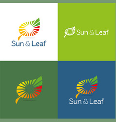 Sun and leaf vector