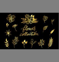 floral set very detailed hand-drawn elements vector image