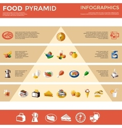 Food Pyramid Infographic vector