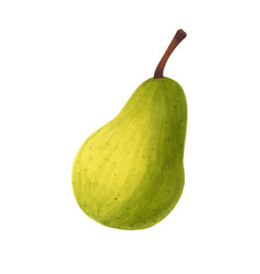 realistic green pear isolated on white background vector image