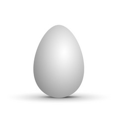 realistic white egg vector image