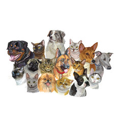 set of dogs and cats breeds vector image