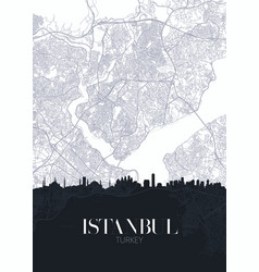 Skyline and city map istanbul detailed urban vector