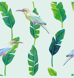 tropical bird palm leaves green background vector image
