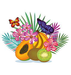 tropical garden with papaya and kiwi vector image