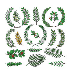 Wreath tree branch herald wreathed vector