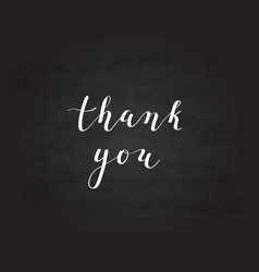 hand-drawn thank you digital calligraphy vector image