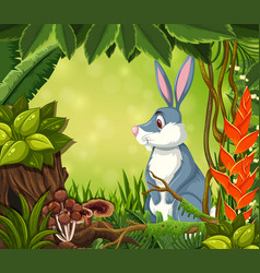 a rabbit in jungle background vector image