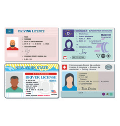 driver license banner horizontal set flat style vector image