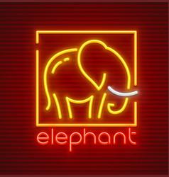 Elephant animal silhouette vector