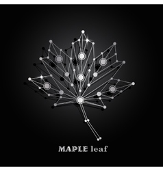 Silver maple leaf vector