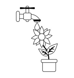 Sunflower under water faucet in black and white vector