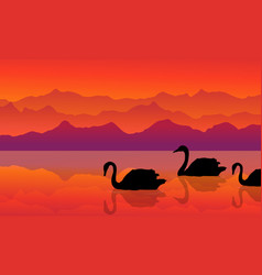 Swan on the lake of silhouette landscape vector