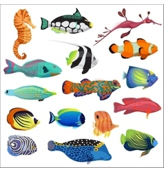 Exotic colorful tropical fish fishes collection vector image vector image
