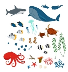 Ocean animals and fishes vector image vector image