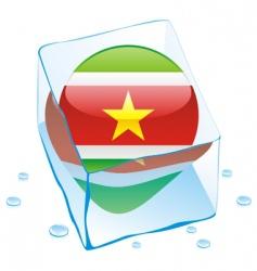 Suriname flag vector image vector image