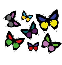 collection coloured butterflies vector image