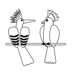 exotic birds cartoons in black and white vector image