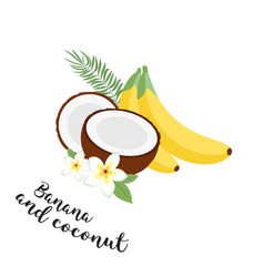 Funny fruit set bananas coconuts and leaves set vector