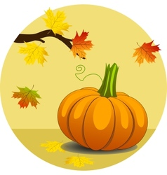 Pumpkin with Maple Leaves vector image