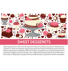 sweet desserts cake and candies with chocolate set vector image