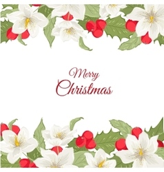 White Christmas rose holly berry mistletoe garland vector image
