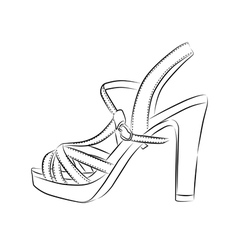 Elegant womens high heel shoe on white background vector image vector image