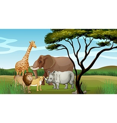 Scary animals in the jungle vector image vector image