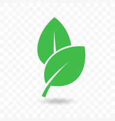 green leaf vegan bio or eco food icon vector image