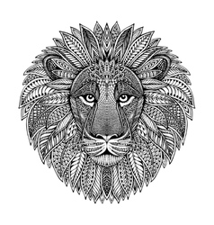 hand drawn graphic ornate head lion vector image