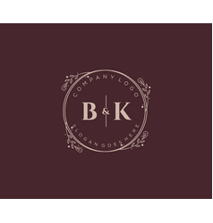 Initial bk letters decorative luxury wedding logo vector