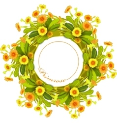 Orange yellow primroses wreath vector image