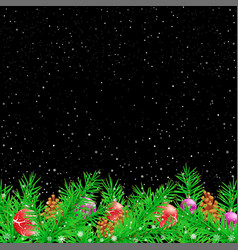 spruce christmas black night background vector image