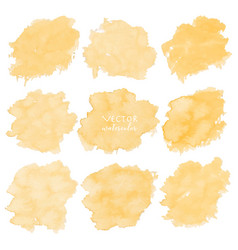 yellow watercolor set on white background vector image