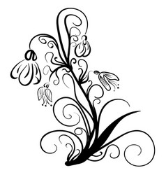 snowdrops doodle style floral snowdrops vector image