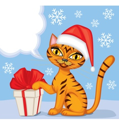 Tabby cat wishes Merry Christmas vector image vector image