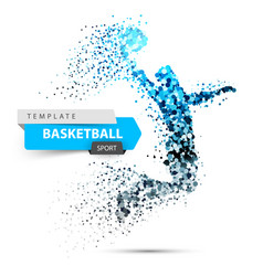 basketball dot on the white vector image
