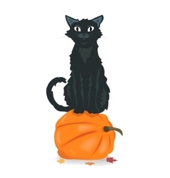 Black cat sitting on Halloween pumpkin vector