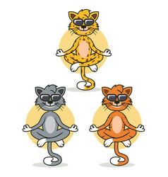 Cat guru mascot design vector