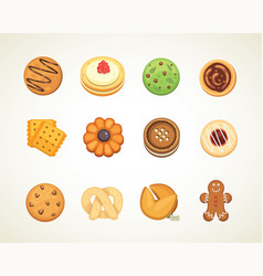 different cookie cakes top view sweet food vector image